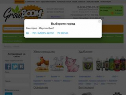 Site growboom.ru