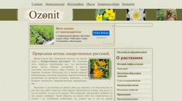 Screenshot ozonit.ru