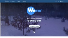 Screenshot winterfm.ru